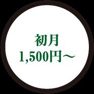 初月 1,500円〜